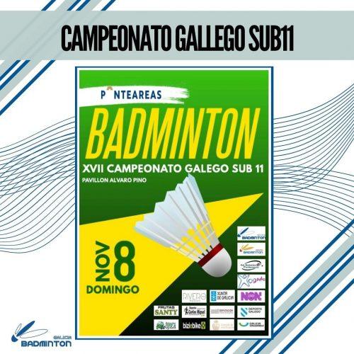 Lee más sobre el artículo Campeonato Gallego Sub11